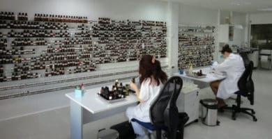 ISO 9001 en aromas y fragancias a Dauper