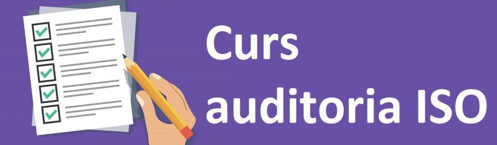 Curs auditoria interna